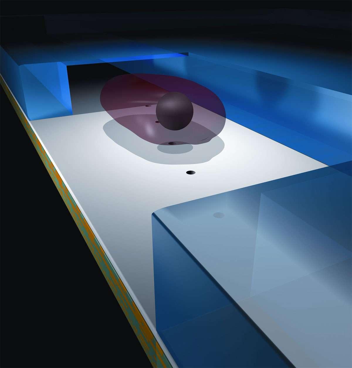 Schéma du tunnel dans lequel l'échantillon (l'objet violet) est emporté, passant au-dessus des trous (points noirs) qui surmontent les éléments photosensibles. © Changhuei Yang
