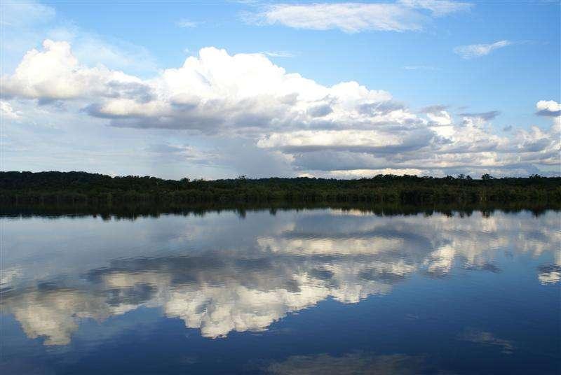 Dans cette étude, les chercheurs ont cartographié les nappes souterraines de l'Amazonie grâce à des mesures réalisées par satellite. © Chris Parker, Flickr, cc by 2.0