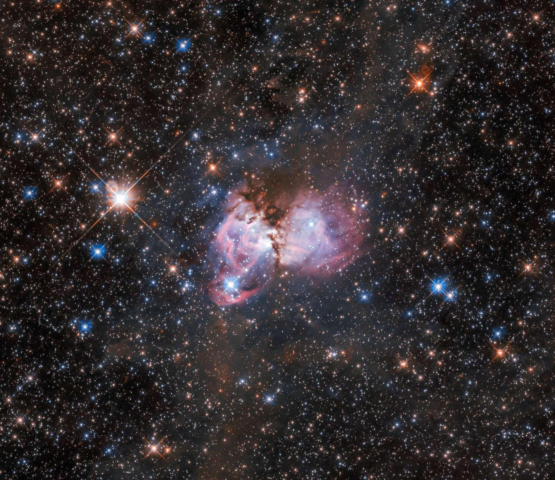 LHA 120-N 150, en lisière de la nébuleuse de la Tarentule, appartient à l'immense nuage qui s'étend sur plus de 1.000 années-lumière. © ESA, Hubble, Nasa, I. Stephens