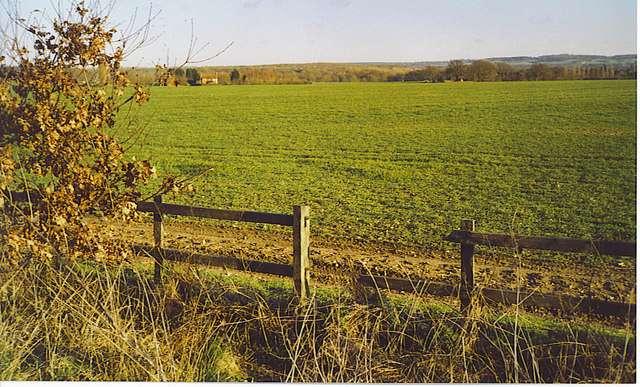 Une prairie artificielle fraîchement créée. © Colin Smith / Geograph CC by-sa