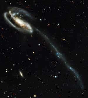 UGC 10214 évolue à près de 420 millions d'années du Soleil, dans la constellation du Dragon. © Nasa et the ACS Science Team