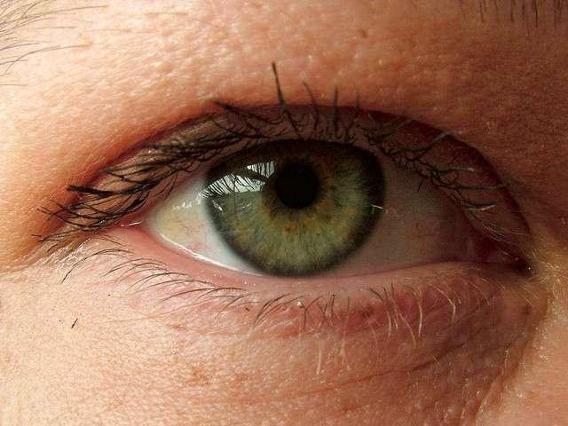 Un examen de périmétrie automatique mesure la sensibilité de l'œil. Il permet notamment de diagnostiquer un glaucome. © Eelco, Flickr, CC by-nc 2.0