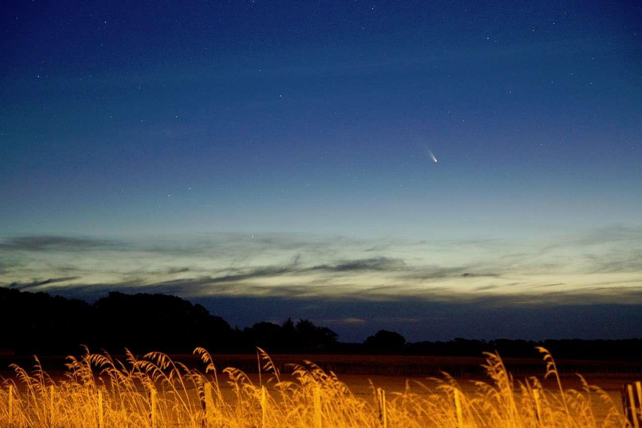 Réalisée le premier jour du mois de mars en Nouvelle-Zélande, cette image de la comète Panstarrs au crépuscule donne une bonne idée de ce qui attend les observateurs de l'hémisphère nord dans quelques jours. © Michael White