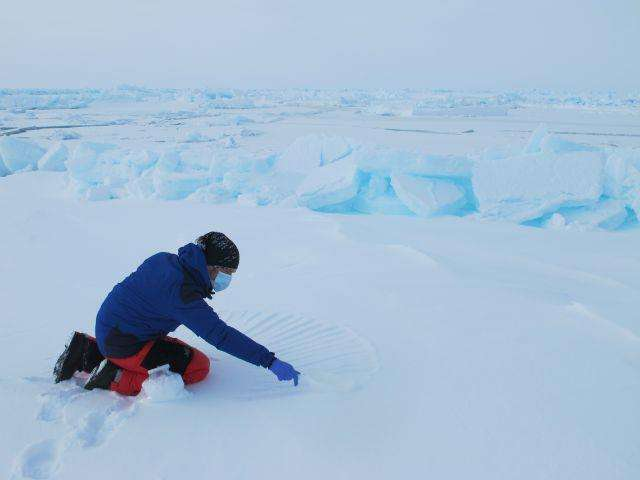Julien Cabon en train de réaliser des prélèvements de neige qui seront ramenés au laboratoire pour des analyses de microbiologie. On sait très peu de choses des populations de bactéries qui vivent là. © Pôle Nord 2012