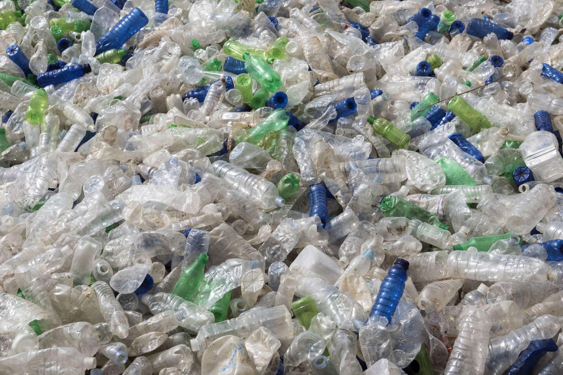 À Guayaquil, dans le sud-ouest de l'Équateur, les usagers du réseau de bus peuvent financer leurs titres de transport en recyclant des bouteilles en plastique grâce aux machines de collecte mises à leur disposition. © Joel Carillet/IStock.com