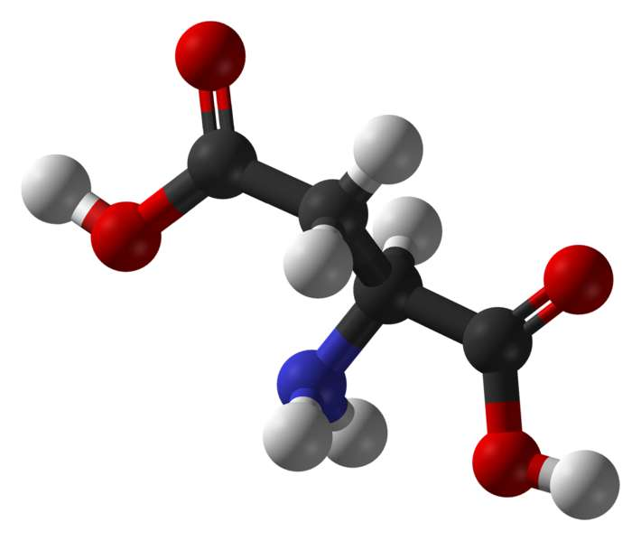 L'acide aspartique est un acide aminé acide (carbone en noir, oxygène en rouge, azote en bleu et hydrogène en blanc). © Ben Mills, domaine public
