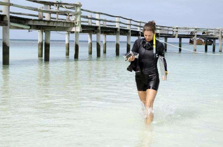 L'une des dernières recrues pour la campagne 2014 du Catlin Seaview Survey, Francesca, sort de l'eau avec les caméras 3D GoPro qu'elle a calibrées. Elles seront utilisées pour recueillir des données sur les récifs coralliens. © Underwater Earth 2013