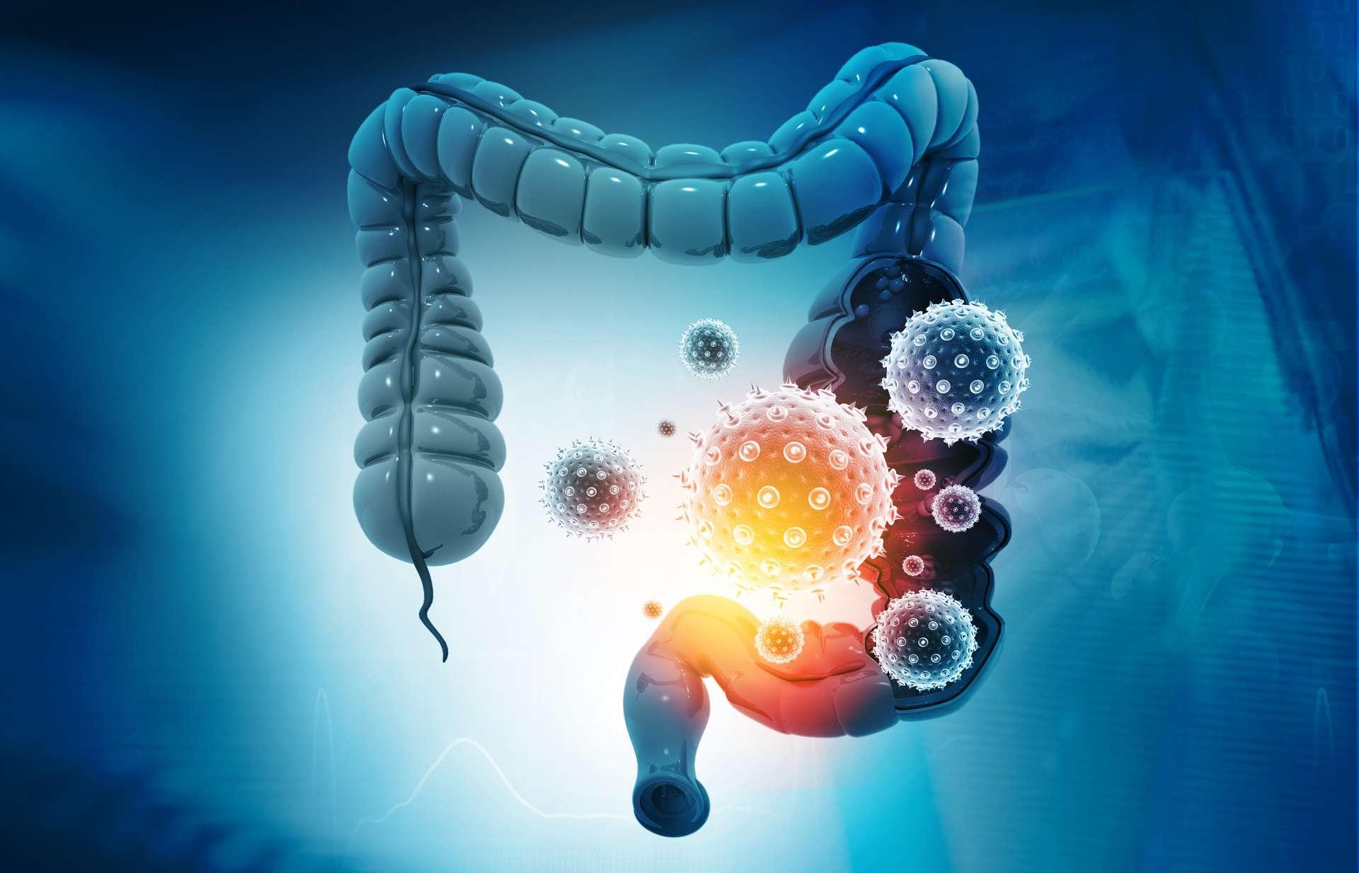 virus intestinal symptomes