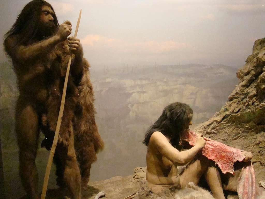 L'Homme de Néandertal a très longtemps été considéré comme inférieur technologiquement aux Hommes modernes. De plus en plus d'études tendent maintenant à montrer que nous nous sommes trompés. © IslesPunkFan, Flickr, cc by nc 2.0