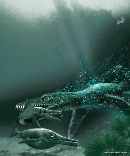 Figure 5. Un pliosaure chassant un ichtyosaure au Jurassique. Crédit : Tor Sponga, BT