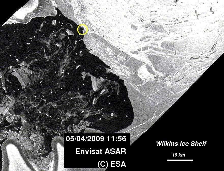 Entouré de jaune, l'endroit précis de la rupture du pont de glace. Crédit Esa