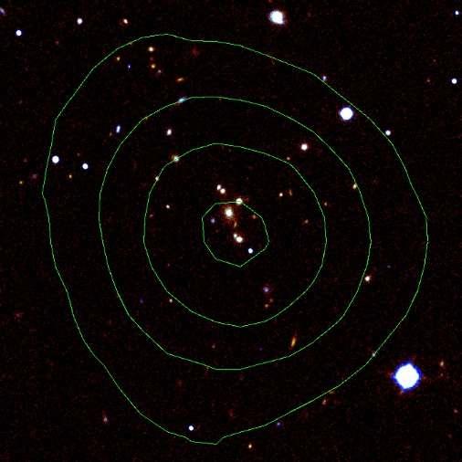 Une image des galaxies de l'amas XMMU J2235.3-2557 fournie par le télescope japonais Subaru. Les isophotes correspondent à l'intensité de l'émission en rayons X. Ce genre d'amas avec une Brightest cluster galaxies en son centre a été étudié par les astronomes de l'Université de Liverpool. Crédit : Liverpool John Moores University