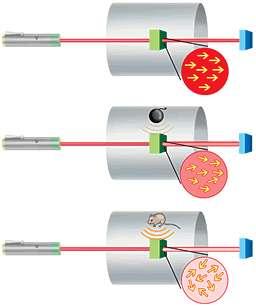 En l'absence de champ magnétique le spin des atomes reste parallèle au rayon laser qui n'est pas absorbé. Un corps approché perturbe cette orientation par son champ magnétique et l'intensité lumineuse du faisceau laser à la sortie baisse. Crédit: Loel Bar