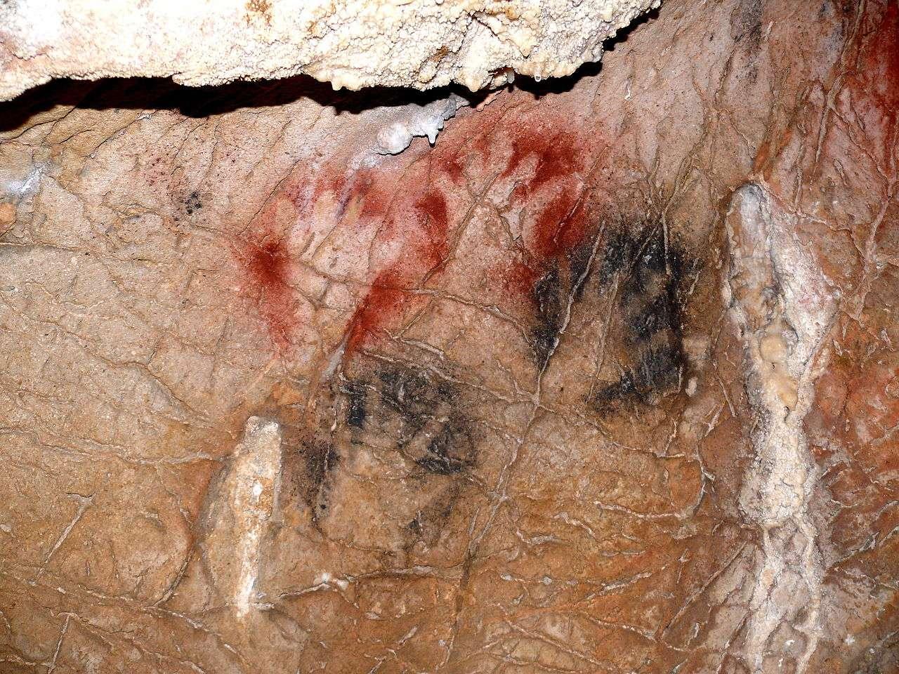 Des empreintes de mains incomplètes dans la grotte de Gargas, en France. Sur les 231 images de mains dénombrées sur ce site, près de la moitié ont au moins une phalange manquante. © Yoan Rumeau, Wikimedia Commons, CC By-SA 4.0