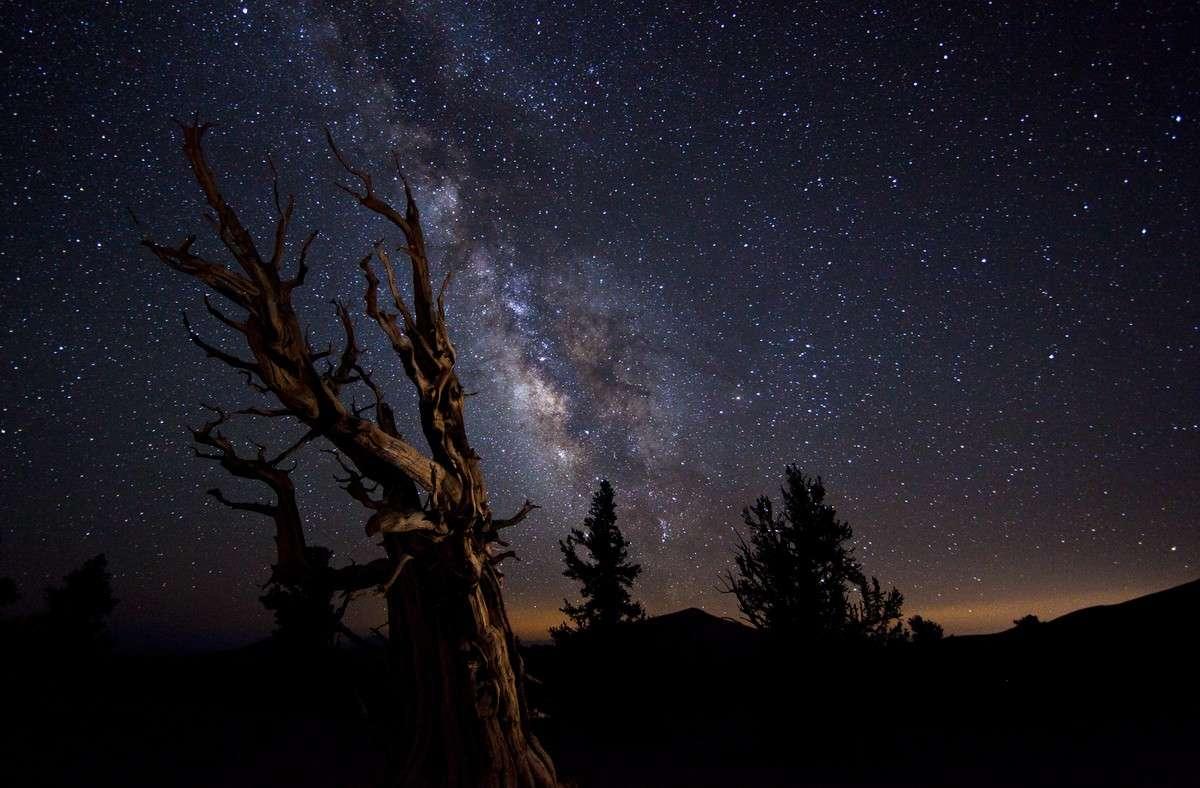 La Terre dans l'espace : c'est dans cette catégorie que cette magnifique image a remporté le concours 2010 de la plus belle photographie astronomique de l'année. Crédit Tom Lowe