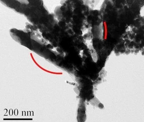 Prise avec un microscope électronique, cette image montre des barreaux ferromagnétiques contenant des nanoparticules de CoFe2C. Ils ouvrent une voie de recherche prometteuse pour des alternatives aux aimants permanents à base de terres rares. © Virginia Commonwealth University
