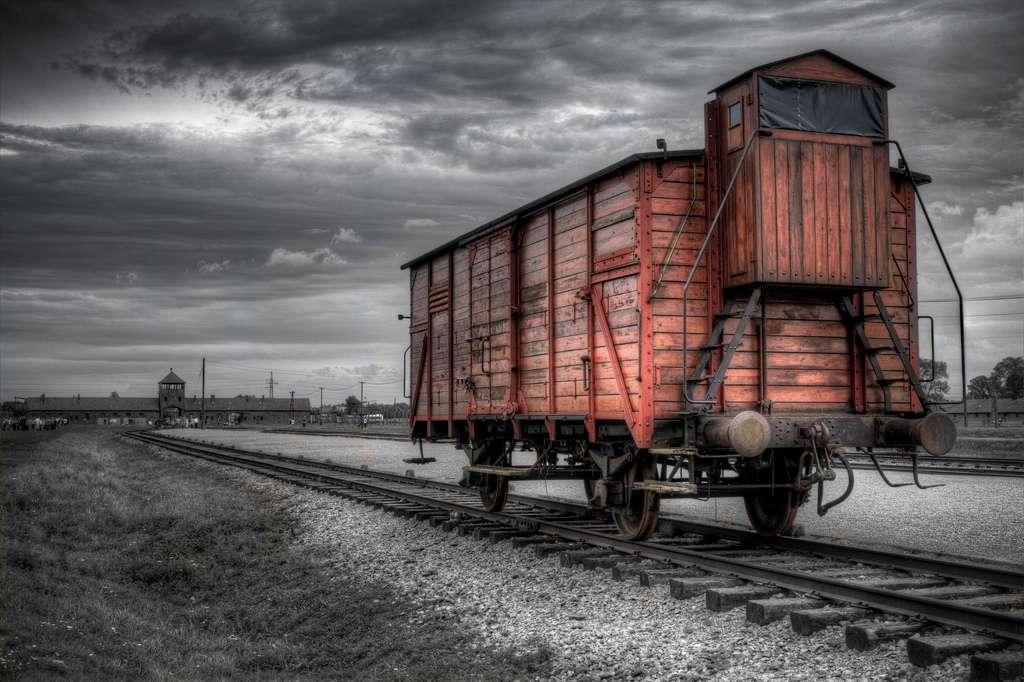 Auschwitz-Birkenau était le plus grand camp d'extermination du IIIe Reich. En cinq ans, plus de 1,1 million d'hommes et de femmes sont morts dans ce camp, dont 900.000 immédiatement à la sortie des trains qui les y amenaient. Selon une étude, les hommes qui ont survécu aux camps auraient une durée de vie plus longue que les autres membres de la population. © Uncertainty And Beyond, Flickr, cc by nc nd 2.0