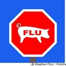 La grippe dite A(H1N1) poursuit sa progression. © Stephen Finn/Fotolia