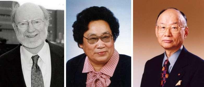 William Campbell, Youyou Tu et Satoshi Omura (de gauche à droite) sont les trois lauréats du prix Nobel de médecine 2015. Ils ont découvert des traitements contre des maladies qui touchent des millions de personnes dans le monde. © Comité Nobel