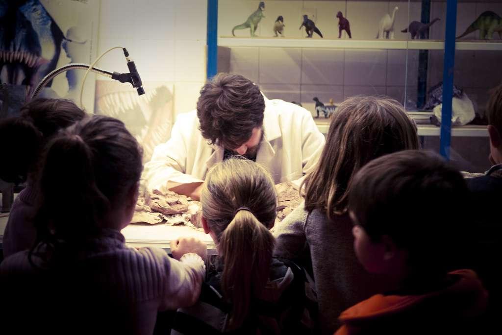 La paléontologie se pratique à la fois sur le terrain lors de fouilles et en laboratoire pour des études plus approfondies. Le nom de cette discipline signifie littéralement « science étudiant la vie ancienne ». © AlexTurtles, Flickr, cc by nc sa 3.0