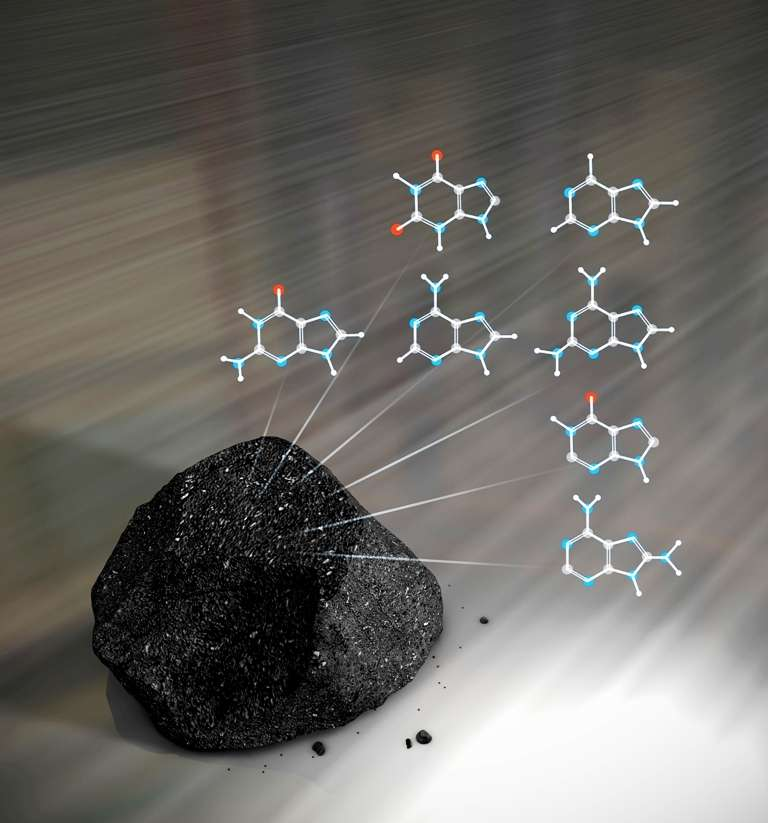 Une chondrite carbonée et les formules chimiques des molécules trouvées par les chercheurs. © Nasa's Goddard Space Flight Center/Chris Smith