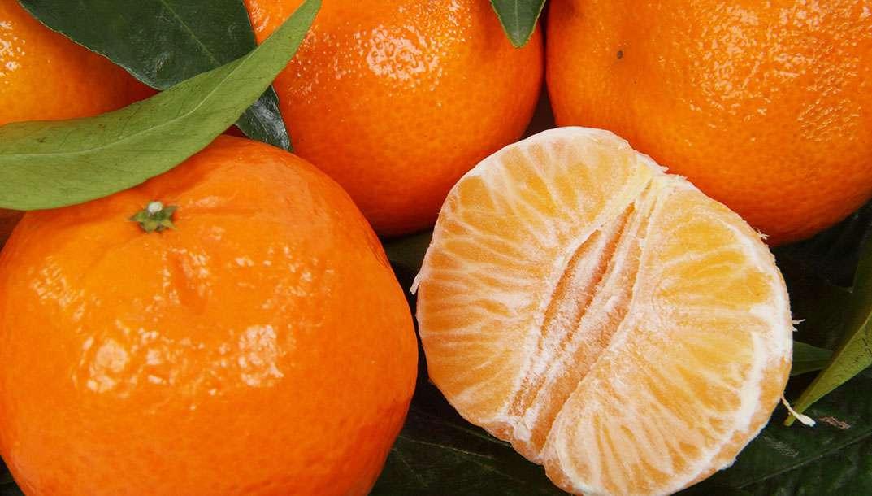 Clémentine ou mandarine, quelles différences ?