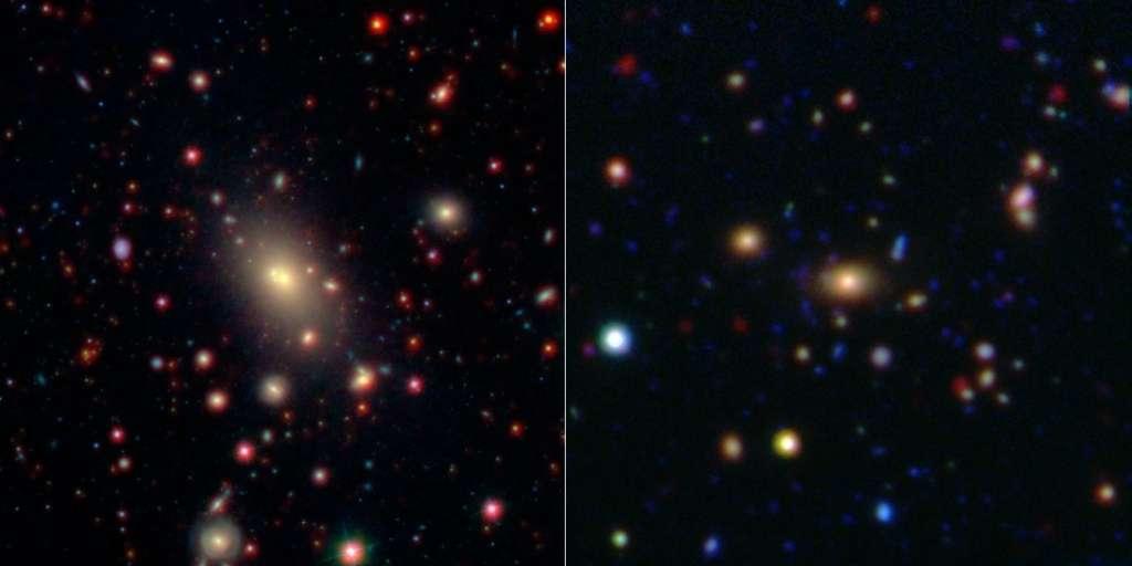 Ces images montrent deux des amas de galaxies observées par Wide-field Infrared Survey Explorer (Wise) et le télescope spatial Spitzer. Au centre de chaque image, une Brightest Cluster Galaxy se signale par sa luminosité. L'image de gauche montre l'amas Abell 2199, à une distance de 400 millions d'années-lumière du Soleil. Cette image combine les données infrarouges de Wise (en rouge) avec celles dans le spectre visible du Sloan Digital Sky Survey (en bleu et vert). Sur la droite, on distingue l'amas CSI 1433.9+3330, qui est nettement plus éloigné avec une distance de 4,4 milliards d'années-lumière. Les données infrarouges de Spitzer (en rouge) sont combinées avec des données similaires prises par le télescope Mayall de Kitt Peak, en Arizona. © NASA, JPL-Caltech, SDSS, NOAO