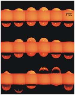 Sous l'effet d'ultrasons, deux gouttes d'eau installées dans un tube d'environ 1 mm de diamètre se déforment et se déplacent, comme le montrent ces photos prises avec des intervalles de temps très courts. © Rensselaer/Carlos A Lopez