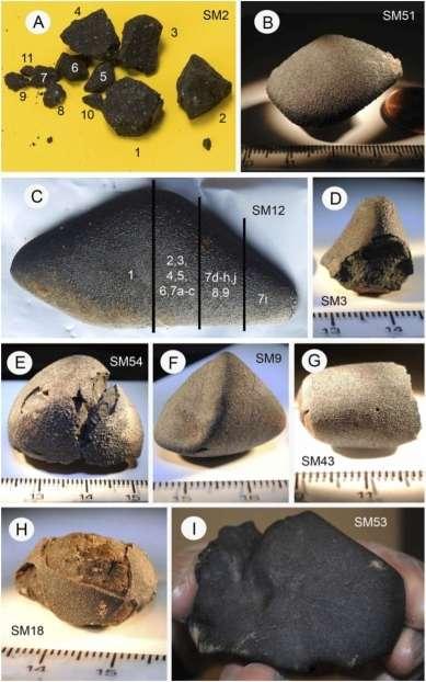 Quelques fragments de la météorite de Sutter's Mill, en cours d'analyse. © Peter Jenniskens et al., Science