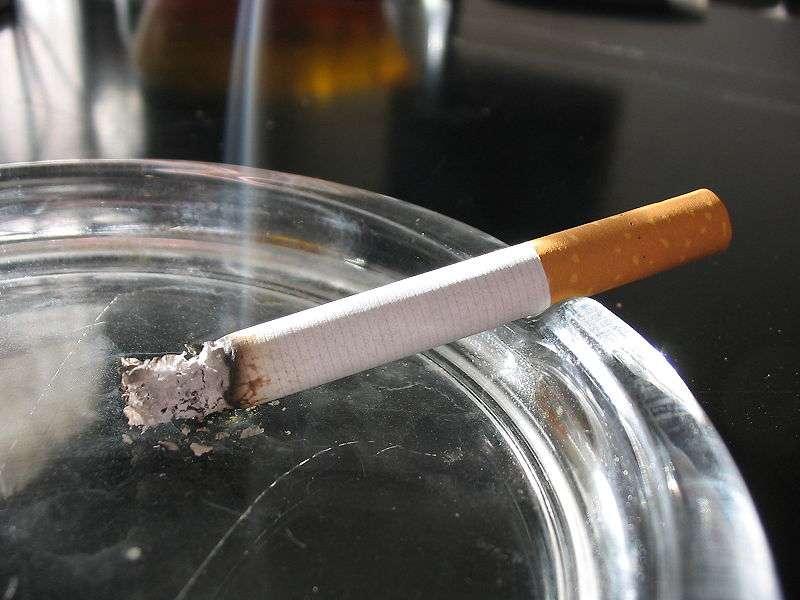 Certaines estimations considèrent qu'un fumeur sur trois voudrait arrêter de fumer, mais les deux tiers qui tentent le sevrage n'y parviennent pas. Ce vaccin génétique contre la nicotine est-il la solution à leur problème ? © Tomasz Sienicki, Wikipédia, cc by sa 3.0