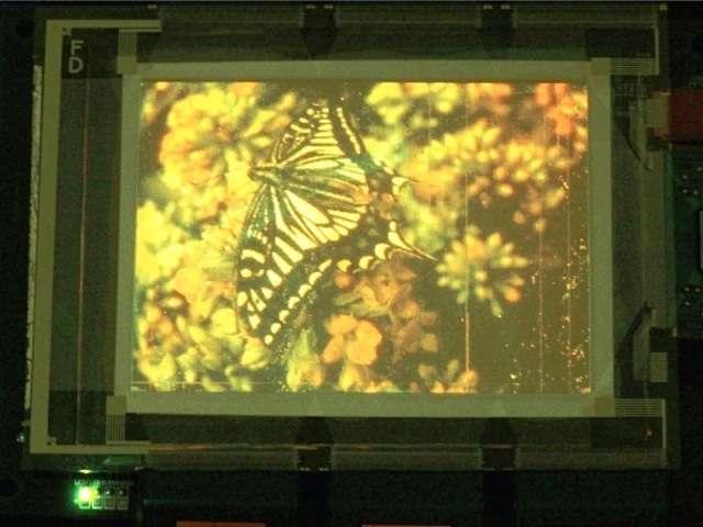 L'écran à boîtes quantiques réalisé par les chercheurs de Samsung. © Tae-Ho Kim et al 2011 Macmillan Publishers