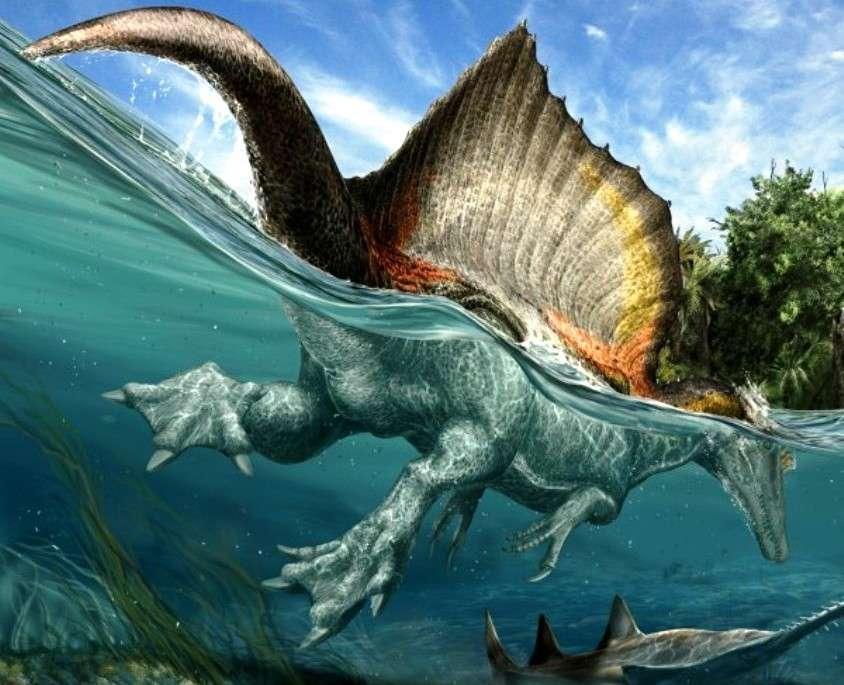Pouvant peser jusqu'à 20 tonnes environ selon certaines estimations et mesurant 15 mètres de long, soit 3 de plus que le T-Rex, Spinosaurus aegyptiacus apparaît aujourd'hui comme le plus grand dinosaure carnivore de tous les temps. Il était certainement piscivore et il devait probablement se nourrir par exemple des poissons scies de 7 mètres de long qui vivaient dans les rivières qu'il écumait il y a 95 millions d'années. La structure osseuse de ses pieds laisse penser qu'ils pouvaient être palmés et servir à pagayer et à marcher sur des terrains boueux. © Davide Bonadonna, Nizar Ibrahim, Simone Maganuco, Science