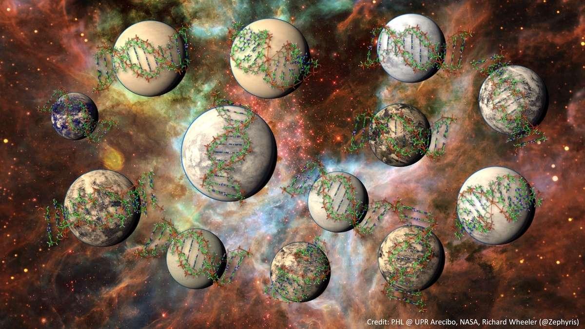 Illustration d'exoplanètes arborant une vie complexe, c'est-à-dire, du point de vue d'un Terrien, équivalent à nos multicellulaires plutôt qu'à nos bactéries. Selon l'étude du professeur Irwin et de ses collègues, elles seraient au minimum cent millions dans notre galaxie avec un indice favorable. © PHL, UPR Arecibo, Nasa, Richard Wheeler