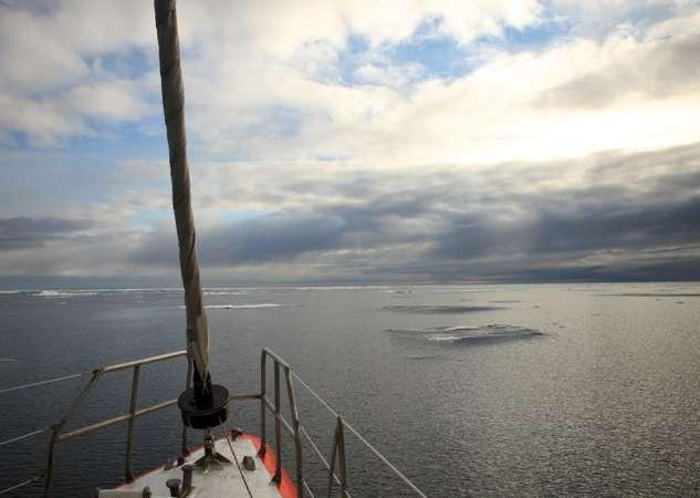 Tara est une goélette : le mât avant est plus petit ou, comme c'est le cas ici, aussi haut que le mât principal. Elle dispose d'une coque en aluminium et d'une double quille relevable, conçue pour résister à la glace. À bord de ce navire de 36 mètres de long pour 10 mètres de large, la place est prévue pour la quinzaine de personnes, équipage et scientifiques, qui œuvrent à bord. © A. Deniaud, Tara Expéditions