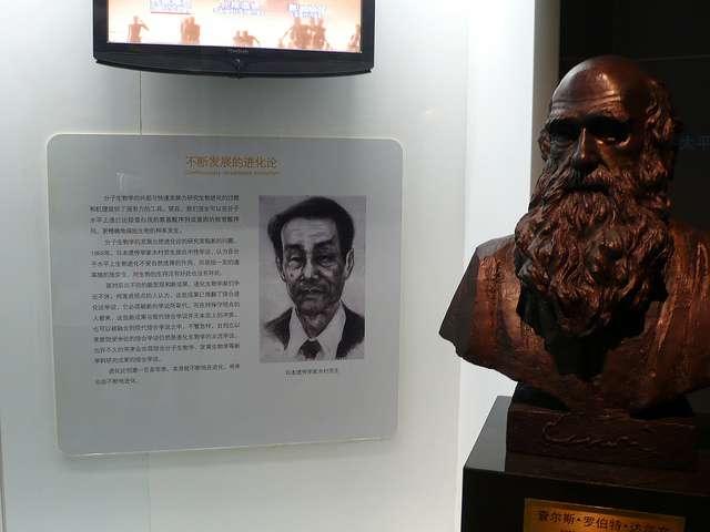 Mooto Kimura (à gauche), père de la théorie neutraliste en évolution moléculaire, au côté de Darwin (à droite)... © loronet CC by-nc-nd 2.0