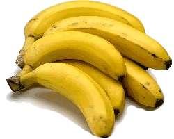 La course pour sauver la banane a commencé