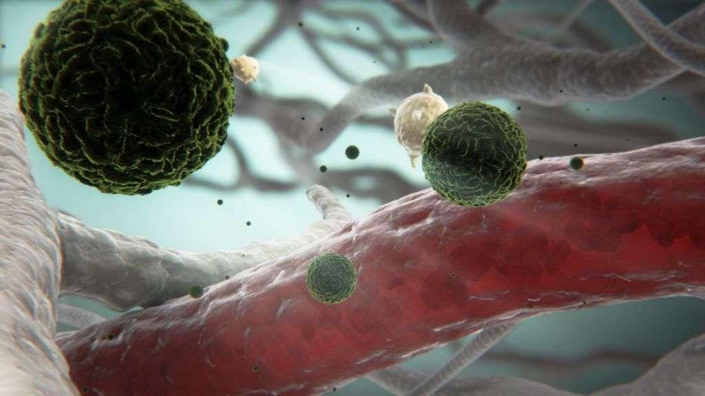 Le virus de la dengue, représenté ici en vert en images de synthèse, existe sous quatre formes. Une première infection immunise à vie contre le variant responsable. Mais les personnes victimes d'une deuxième infection par une autre souche peuvent développer des symptômes plus sévères. © Sanofi Pasteur, Flickr, cc by nc nd 2.0