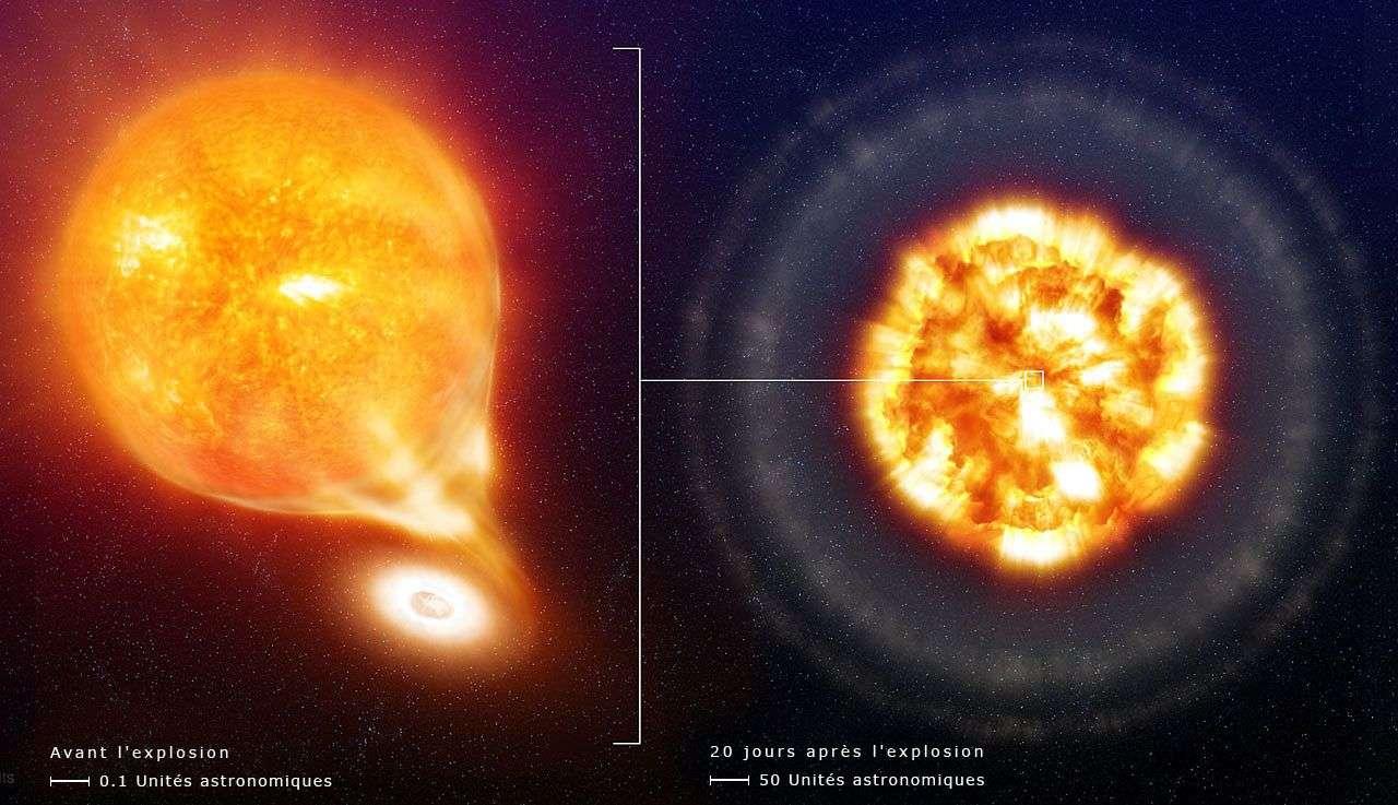 En vue d'artiste, une nova classique (ou d'une supernova de type SN Ia). Une naine blanche, en bas, et une étoile géante (en haut), en haut, tournent l'une autour de l'autre, et sont donc en interaction gravitationnelle. La plus massive est la plus petite, car elle est très dense. Cette naine blanche arrache de la matière à sa compagne jusqu'à ce que des réactions thermonucléaires se produisent, générant une explosion (image de droite). © ESO