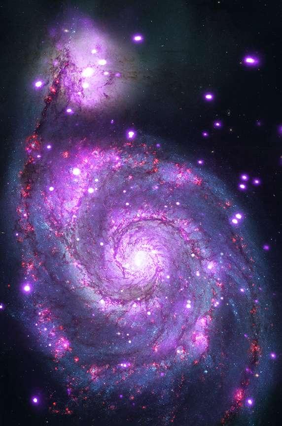 Superposée au portrait réalisé par Hubble, la galaxie M51 dévisagée dans les rayonnements X par Chandra (en pourpre). Plus de 500 sources apparaissent, parmi lesquelles de nombreuses supernovae échauffant leur environnement à plusieurs millions de degrés. Très prolixes, les deux galaxies en collision abritent également des binaires à rayonnement X où se cachent des trous noirs. © Nasa, STScI, CXC, Wesleyan University, Roy Kilgard