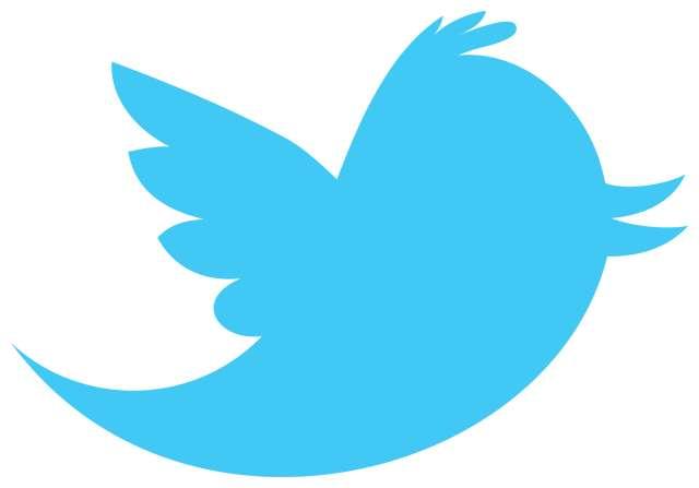 Twitter, le site de microblogging le plus connu.