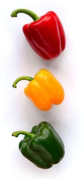 Il existe des poivrons d'une grande variété de couleurs, pour le plaisir des yeux. © Wikimedia Commons