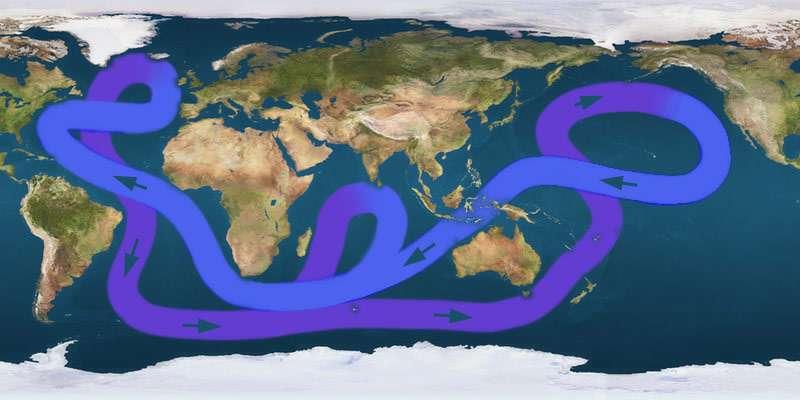 La circulation thermohaline mondiale est un couplage de plusieurs cellules de convection océanique et participe à la redistribution de la chaleur. Lorsque l'océan est plus chaud, la circulation océanique est complètement modifiée. À quoi ressemblera donc la circulation thermohaline à la fin du XXIe siècle ? © cc by sa 3.0, Wikipédia