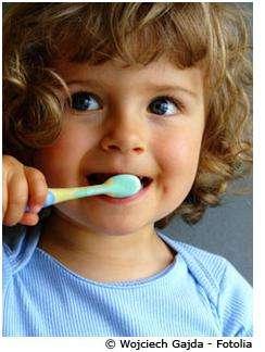 Le brossage des dents doit être réalisé plusieurs fois par jour. © Wojciech Gajda, Fotolia