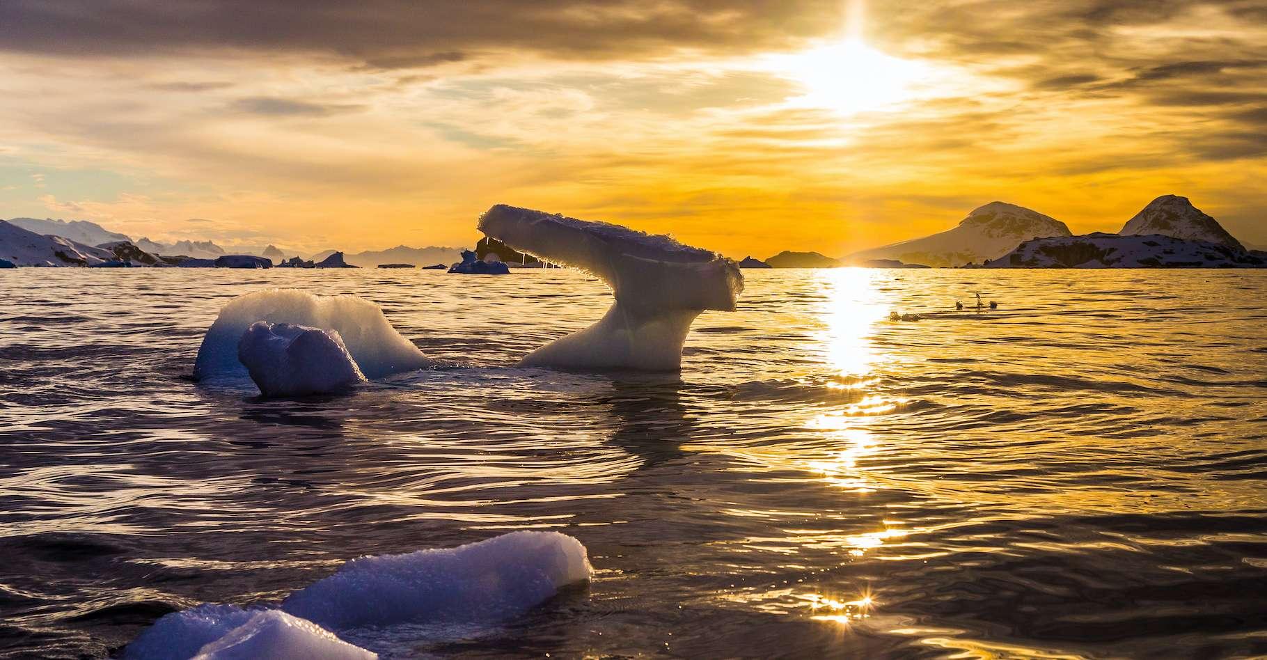 En 2020, il a fait anormalement chaud sur l'Antarctique. © Stanislav, Adobe Stock