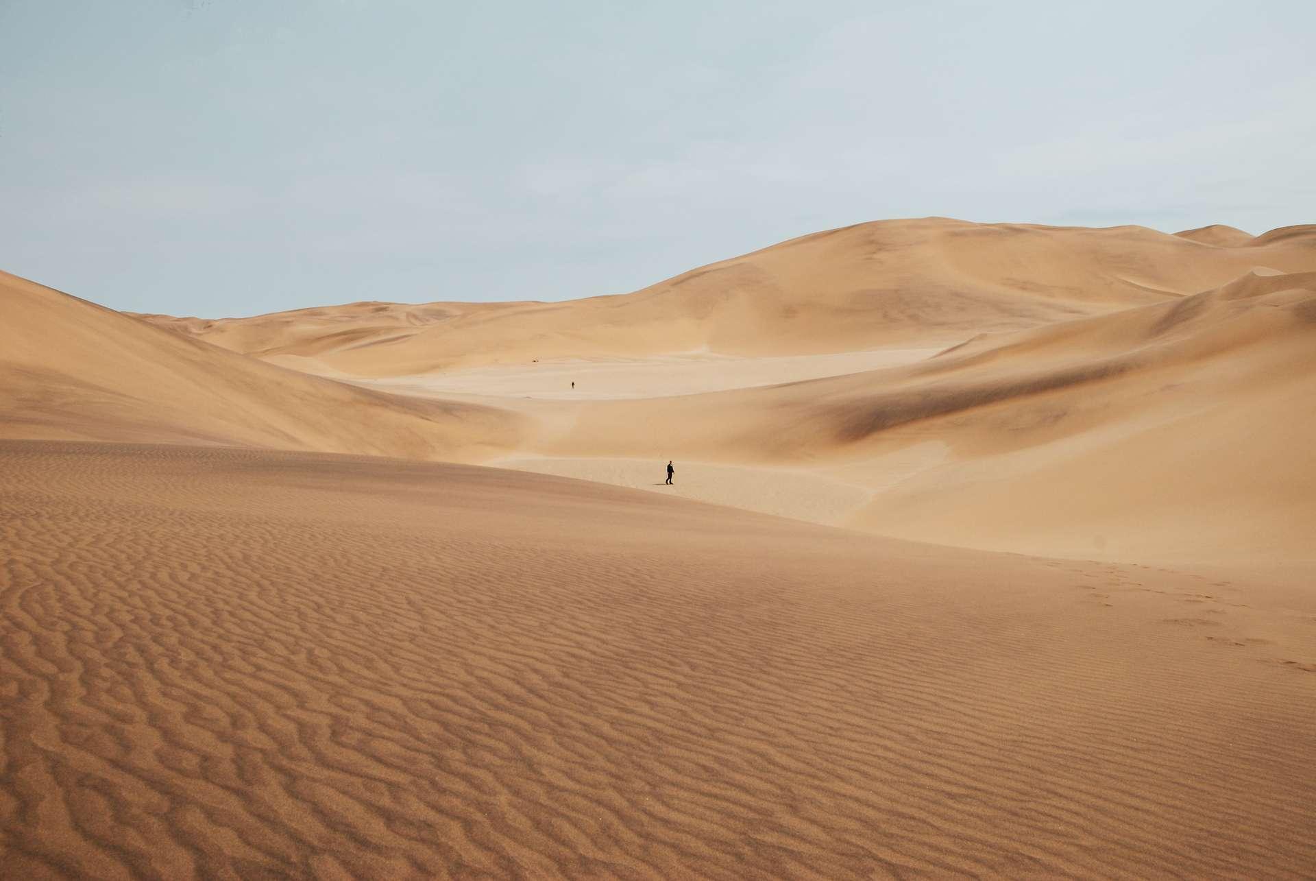 https://cdn.futura-sciences.com/buildsv6/images/largeoriginal/4/b/0/4b05658222_50165186_sable-desert-keith-hardy-unsplash.jpg