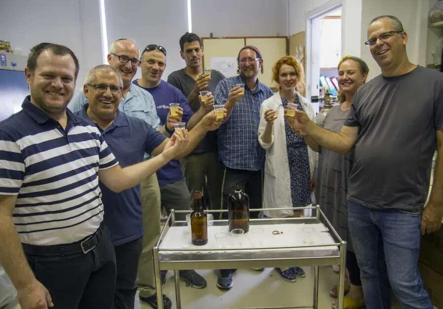 Ici, les chercheurs goûtent un échantillon de leur bière dans les laboratoires de l'université hébraïque de Jérusalem. La bière fabriquée à partir de levure antique, d'une couleur blonde, avec une teneur en alcool de 6 % et un goût similaire à une bière de blé, ainsi qu'un hydromel dont le taux d'alcool est de 14 %, ont ensuite été présentés et offerts en dégustation aux journalistes le 22 mai au comptoir d'un bar de Jérusalem-ouest. © Yaniv Berman/Israel Antiquities Authority (IAA)