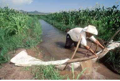 Irrigation au Mexique. De tous les secteurs qui utilisent l'eau douce, c'est l'agriculture qui a la plus faible rentabilité© FAO