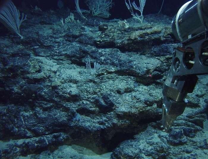 Le mont sous-marin Atlantis est l'objet de nombreuses recherches scientifiques. © DR