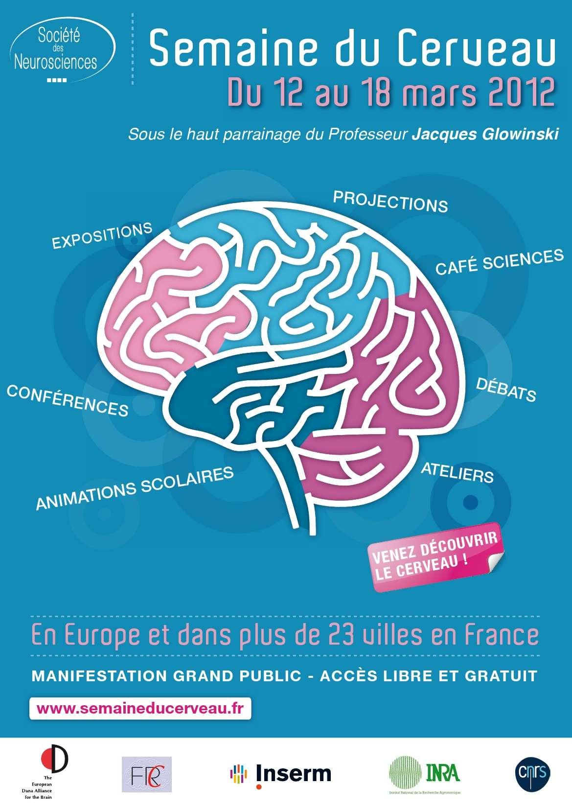 La Semaine du cerveau se tiendra du 12 au 18 mars sur toute la France. Vous pourrez débattre de la maladie d'Alzheimer à Lille et de la maladie de Parkinson à Paris, travailler votre mémoire à Strasbourg ou régénérer votre cerveau à Marseille. © Société des neurosciences