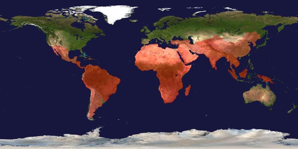 Comme le montre cette carte, le paludisme est une maladie qui affecte toute l'Afrique, une partie sud du continent asiatique et l'Amérique latine. Au lieu de se limiter à l'Afrique, les chercheurs envisagent d'étendre leurs recherches satellite dans toutes ces régions du monde. © Wellcome Trust Sanger Institute, cc by sa 3.0